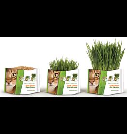 Bell Rock Growers PET GREENS Medley Cereal Grass Blend 88g