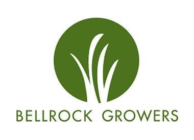 Bell Rock Growers