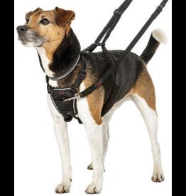 Company Of Animals COANIMALS Halti No Pull Harness L
