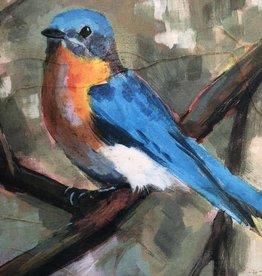 cody blomberg cody blomberg 6x6 eastern bluebird