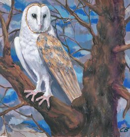 cody blomberg cody blomberg 6x6 barn owl