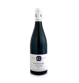 Dom. Philippe Gavignet Bourgogne Pinot Noir, Burgundy 2016