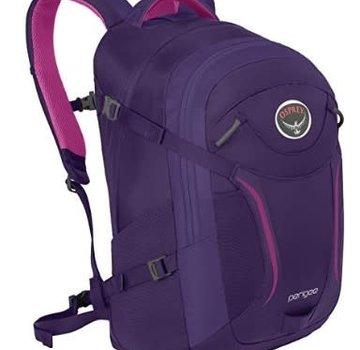 Osprey Perigee Daypack