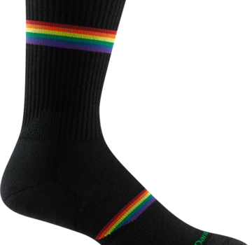 Darn Tough Men's Prism Crew Light Cushion Sock