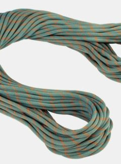Mammut 9.9 Crag Workhorse Dry Rope