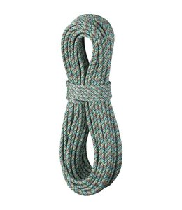 Edelrid Swift Eco Dry 8.9mm Rope