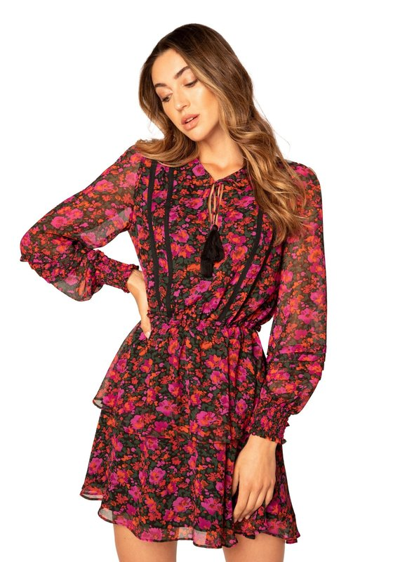 allison NY Floral tiered long sleeve dress