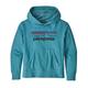 PATAGONIA Patagonia Kids' Lightweight Graphic Hoody Sweatshirt