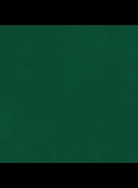 Shannon Fabrics Cuddle Solid Emerald