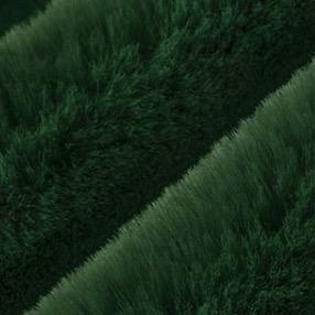 Shannon Fabrics Luxe Cuddle Seal Emerald