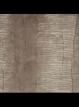 Shannon Fabrics Luxe Cuddle Dune Stone