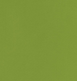 Robert Kaufman Flannel Solid Lime
