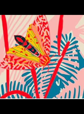 Nerida Hansen Bazaar by Holli Zollinger Moths Cosmic