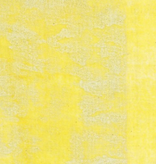 EE Schenck Nani Iro Double Gauze: Pipple Yellow