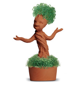 Chia chia pet groot potted