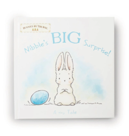 Bunnies By The Bay bunnies by the bay nibble's big surprise board book