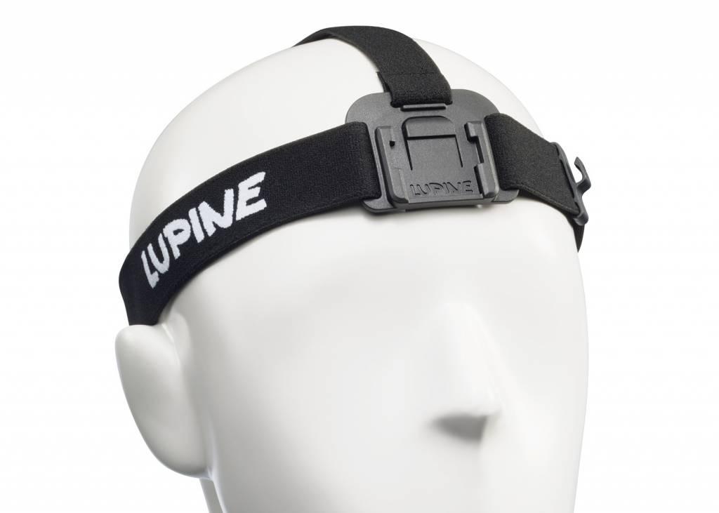Lupine, headband Piko