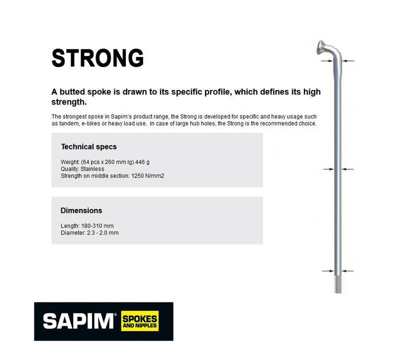Sapim Strong Silver J-Bend 202mm for 700C 36H BionX Wheels