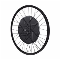 BionX D500 Wheel (Machined Sidewall)