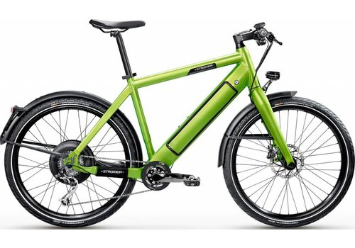 "Stromer Demo Stromer ST1S Platinum 17"" Green 522Wh 36V14.5Ah (Battery Door Different Green)"