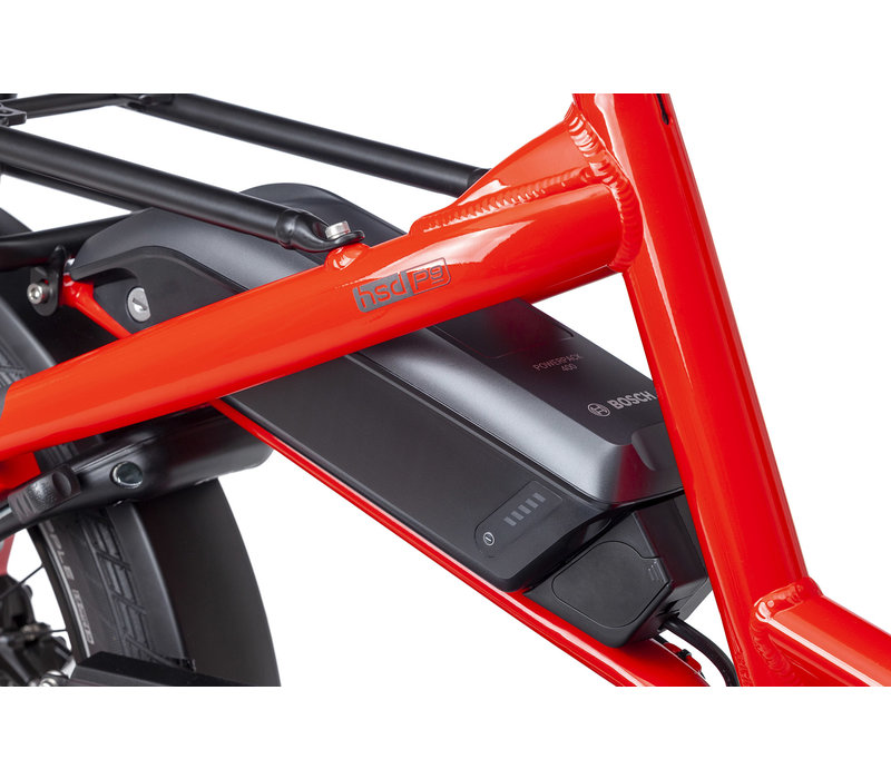 Tern HSD P9 (Red), 400Wh
