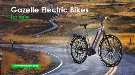 Thinking of Buying an E-bike Quick? Check out the Range of Gazelle Electric Bikes for Sale on Amego