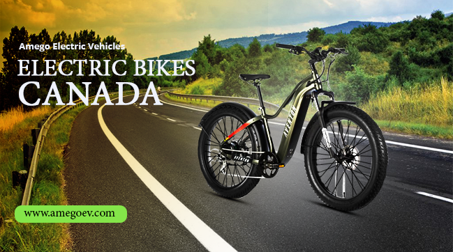 Is Electric Bike Actually Economic?