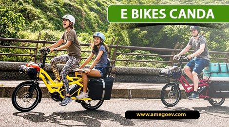 Factors Influencing People for Choosing Electric Bikes Over Others