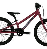 NORCO NORCO ROLLER 20 Pink/Blue