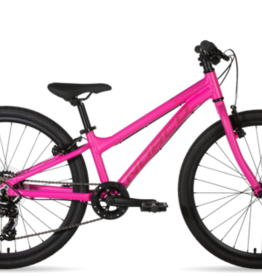 NORCO NORCO STORM 4.3 24 Pink
