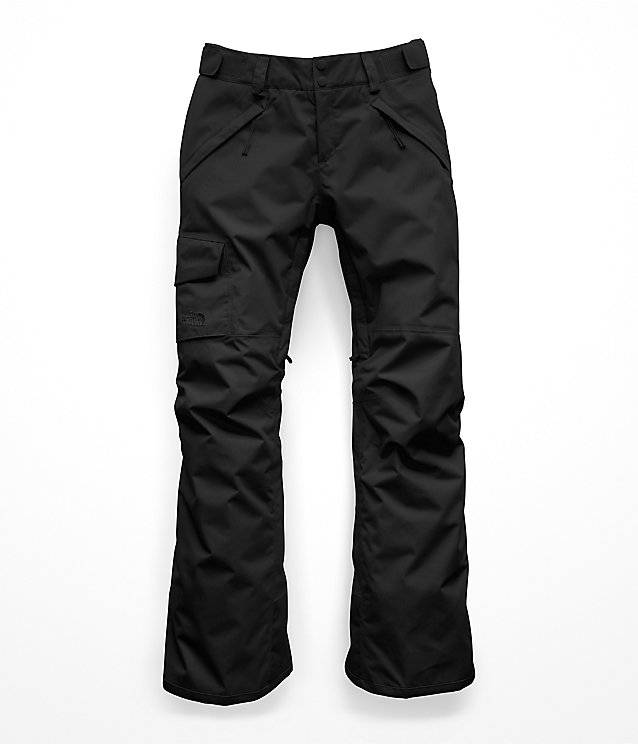 ddfde6b50 THE NORTH FACE W FREEDOM INS PANT