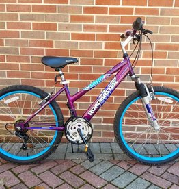 "24"" Kids Roadmaster Mt. Sport Purple"