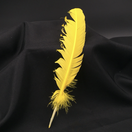 Hex Yellow Feather Quill Pen