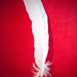 Hex White Feather Quill Pen