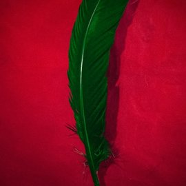 Hex Green Feather Quill Pen