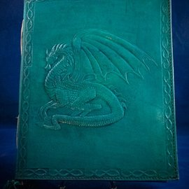 OMEN Large Dragon Journal in Blue