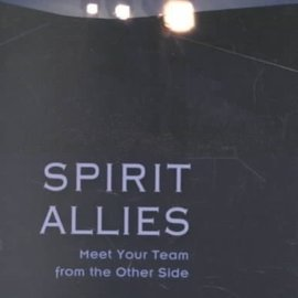 OMEN Spirit Allies: Meet Your Team from the Other Side
