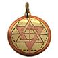 OMEN Star of Solomon Charm Pendant for Wisdom, Intuition, & Understanding