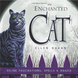 OMEN The Enchanted Cat