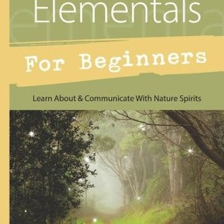 OMEN Faeries & Elementals for Beginners: Learn about & Communicate with Nature Spirits