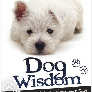 OMEN Dog Wisdom Cards
