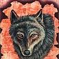 OMEN Shaman Wisdom Cards -- Tarot Cards: 65-Card Deck