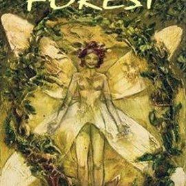OMEN Tarot of the Secret Forest (Lo Scarabeo Decks)