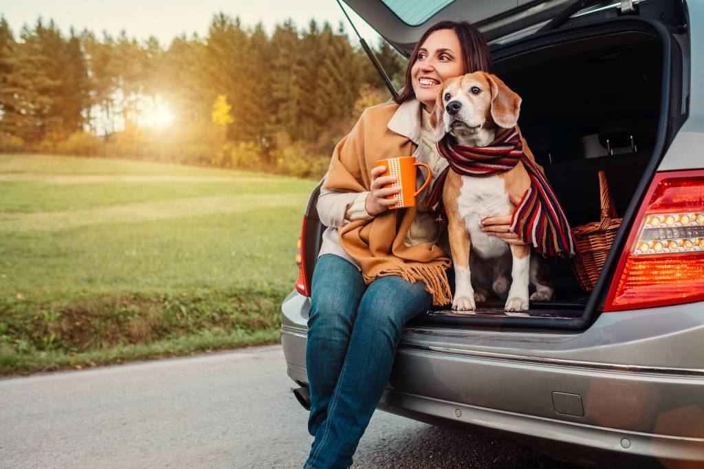 Thanksgiving Travels with Your Dog