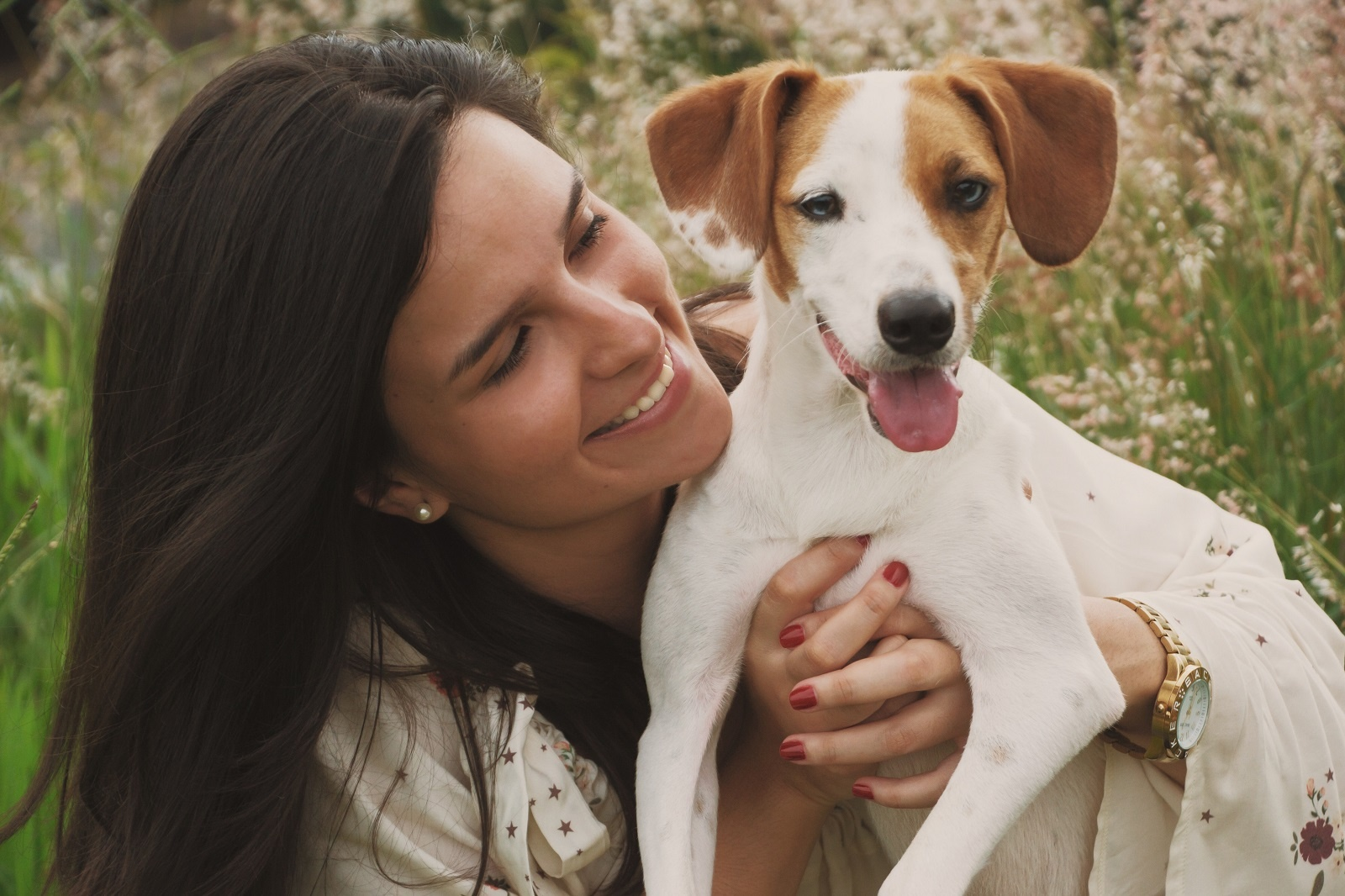 How to Prevent Your Pet from Getting Heartworms