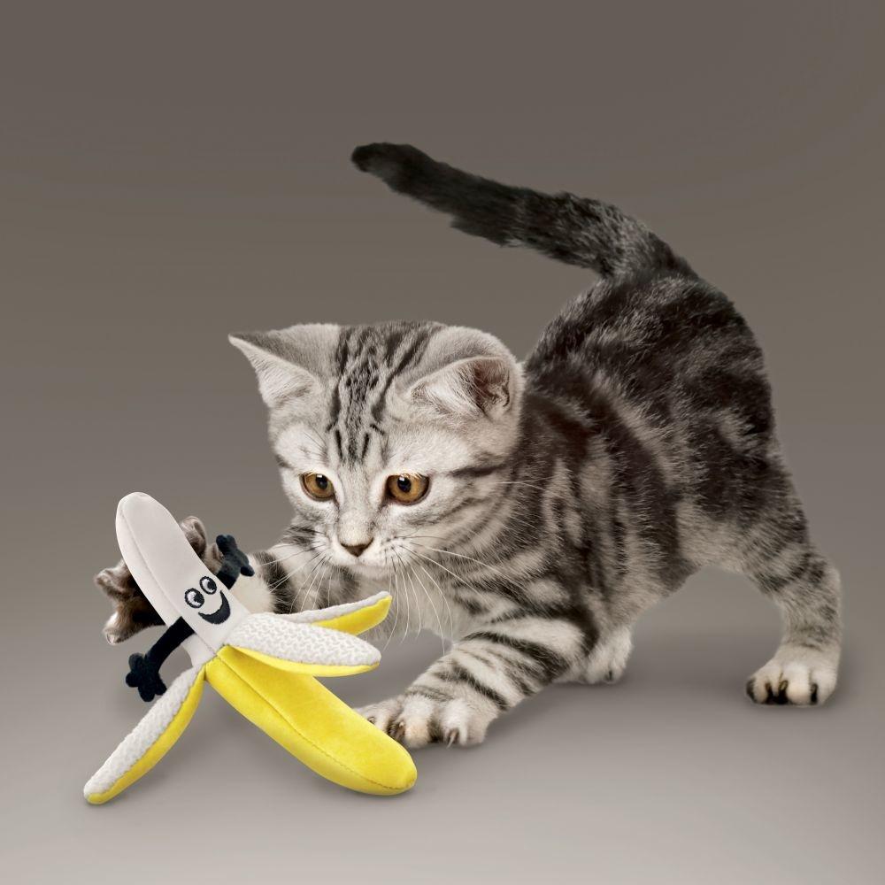 Kong Kong Better Buzz Banana Assorted