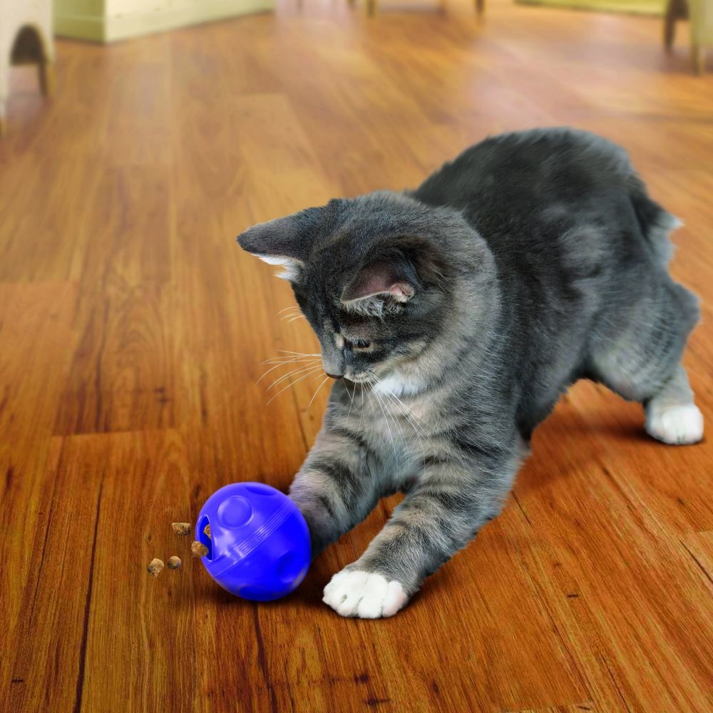 Kong Kong Cat Treat Dispensing Ball
