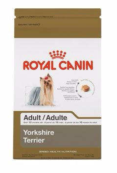 Royal Canin Royal Canin®  Breed Health Nutrition ® Yorkshire Terrier Adult Dry Dog Food