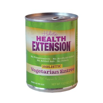 Health Extension Health Extension Can Dog Vegetarian 13 oz.
