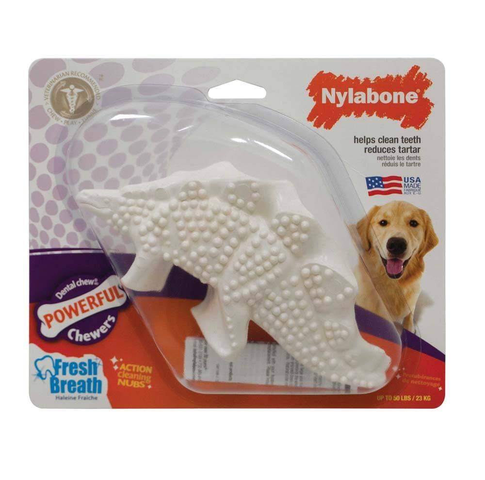 Nylabone Dental Dinosaur Durable Dog Toy